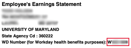 screenshot of earnings statement example with workday ID highlighted